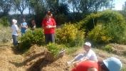 Preparando el Jardín