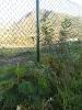 El bosque de Tenerife